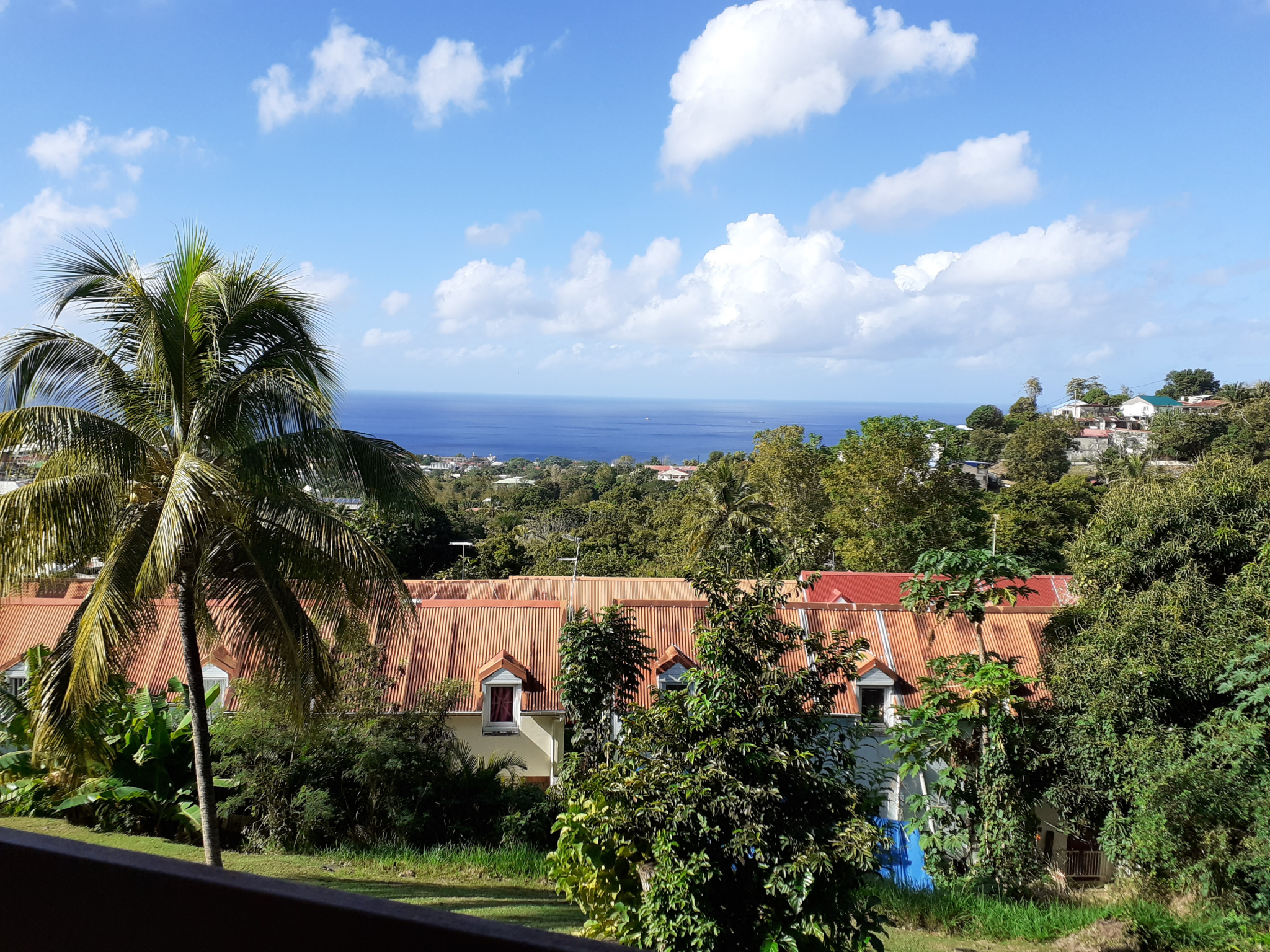 appartement A louer BASSE TERRE